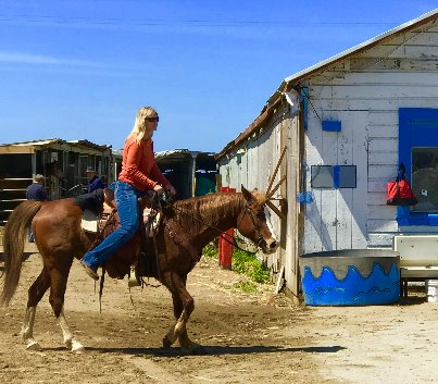 Best Places To Go Horseback Riding In the Bay Area tours